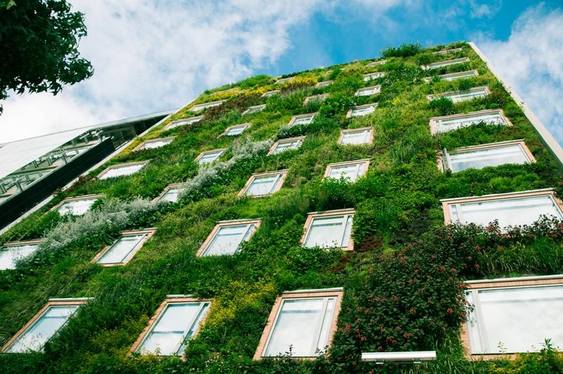 Aislamiento con jardines verticales
